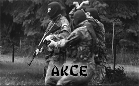 AkceF